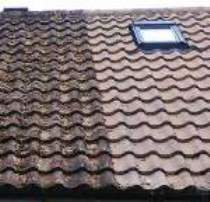 Purley roof cleaning