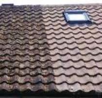 Hailsham roof cleaning