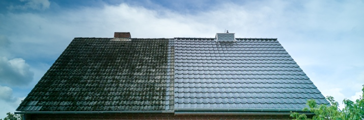 results of roof cleaning