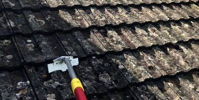 local Somerset roof cleaners